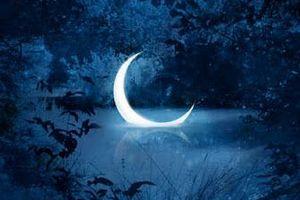 23 лунные сутки